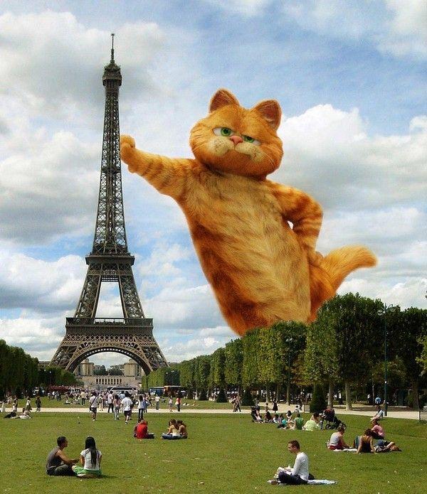 Garfield en général - Page 3 6dbbc078