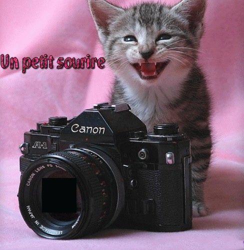 UNE PHOTO ?
